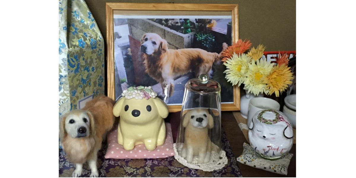 ペット火葬 体験記