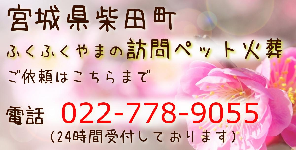 ペット火葬 ペット葬儀 柴田町