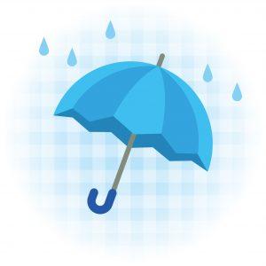 雨 ペット火葬