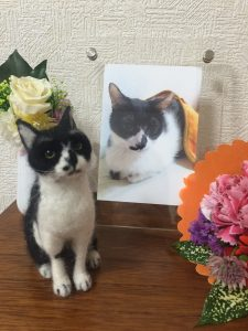 羊毛フェルト 猫 祭壇写真