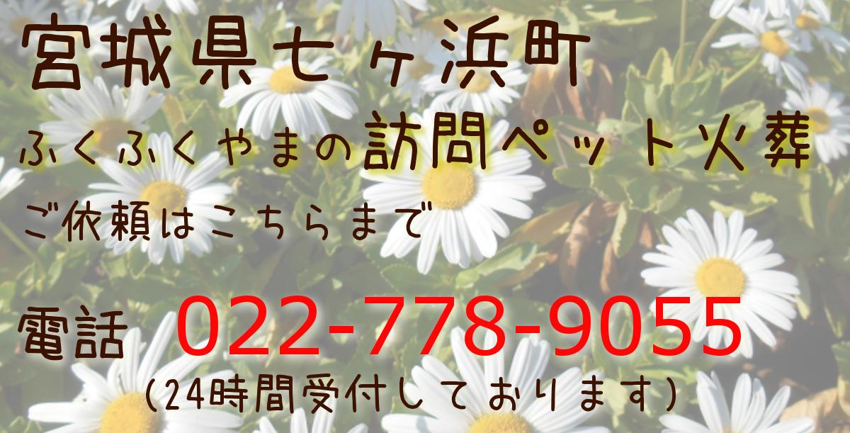 七ヶ浜町 ペット火葬 ペット葬儀