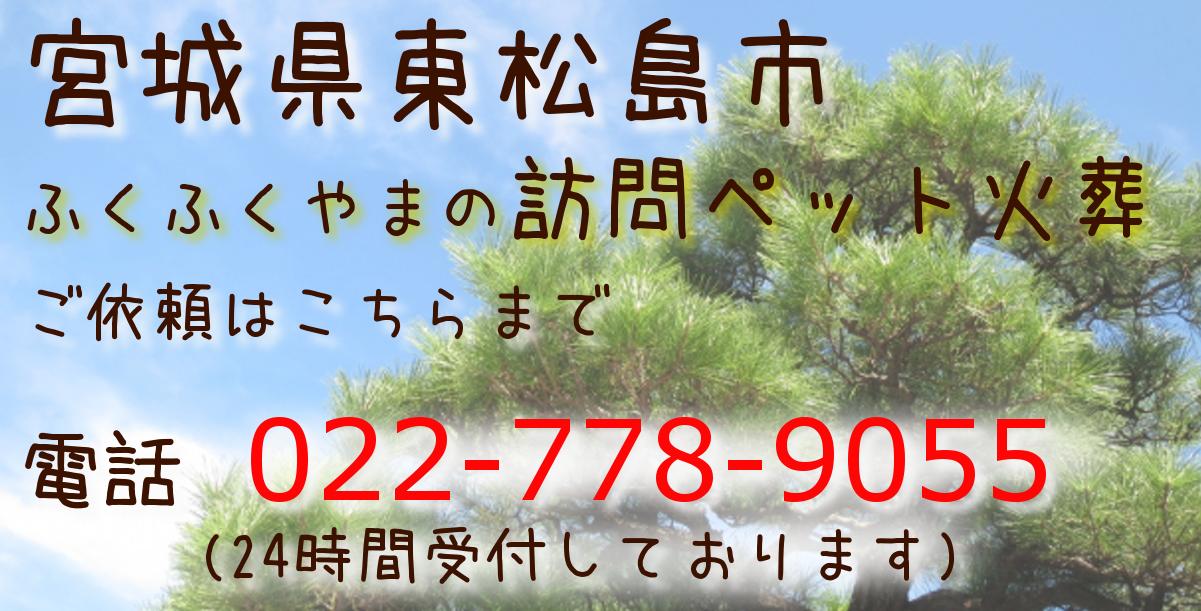 ペット葬儀 ペット火葬 東松島市