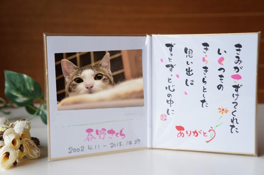 ペット火葬 猫 無料特典