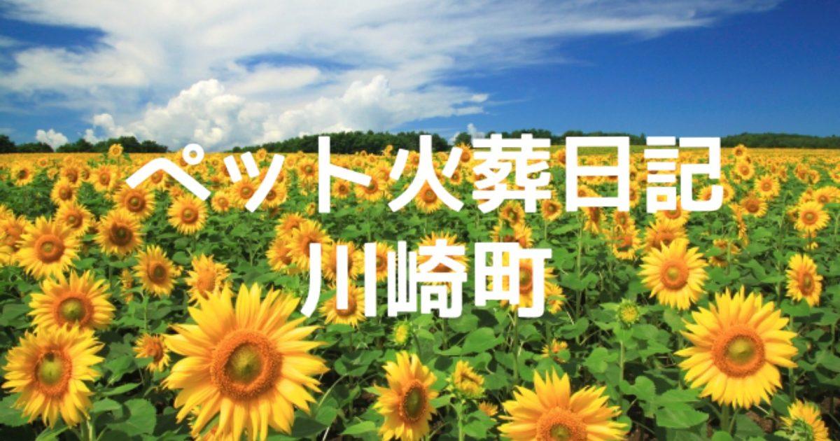 川崎町の訪問ペット火葬日記