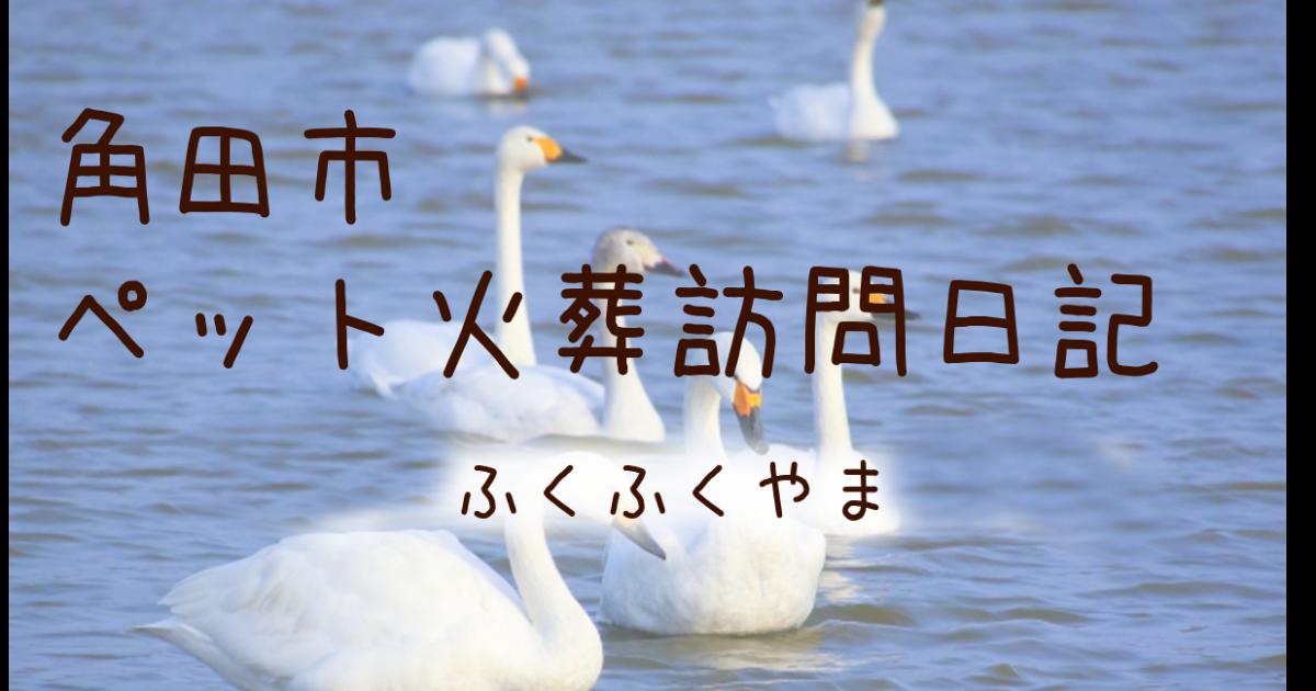 角田市の訪問ペット火葬日記