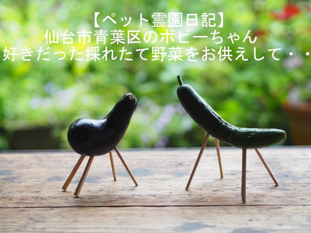 【ペット霊園日記】仙台市青葉区のボビーちゃん